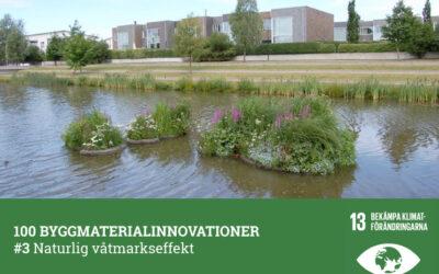 #3 Naturlig våtmarkseffekt
